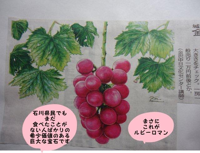 003_20120816212140.jpg
