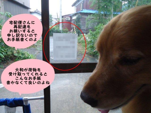 003_20120921203831.jpg