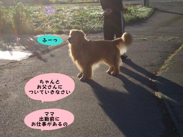 003_20121008204832.jpg