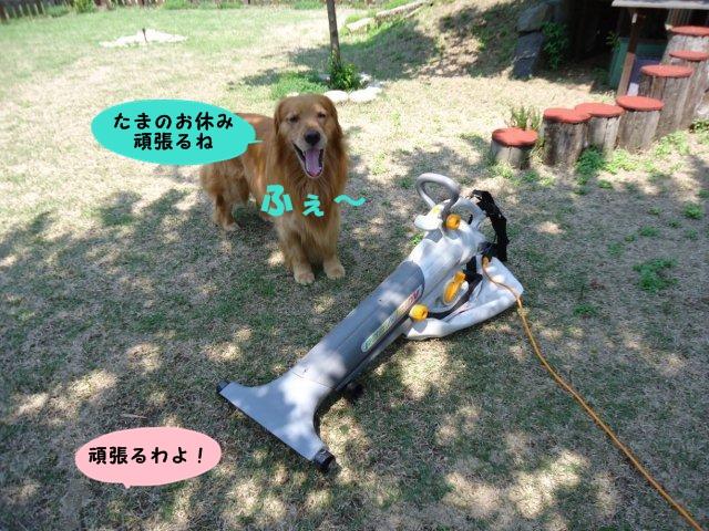 004_20120519201958.jpg