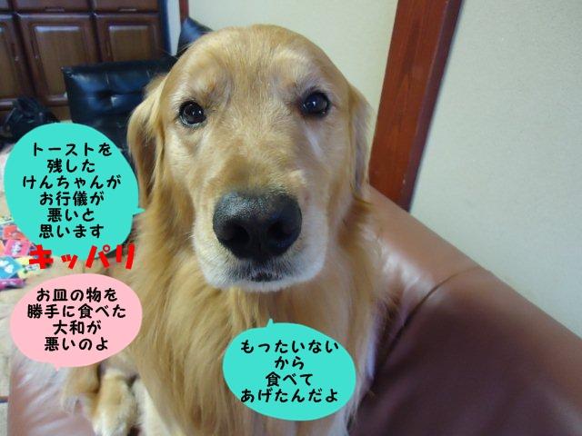 004_20120608102419.jpg