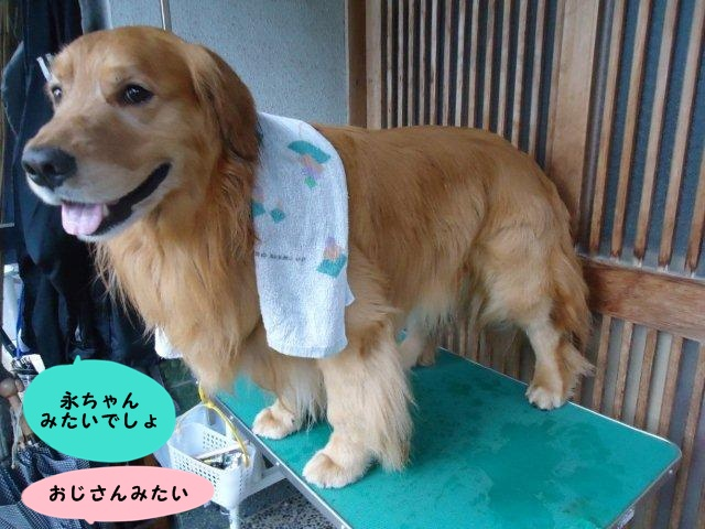 004_20120610194944.jpg