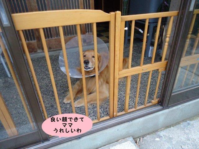 004_20120612113524.jpg