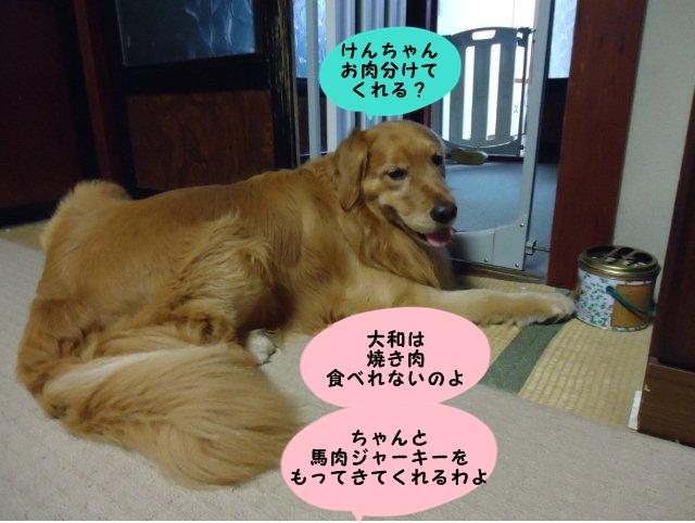 004_20120701205733.jpg