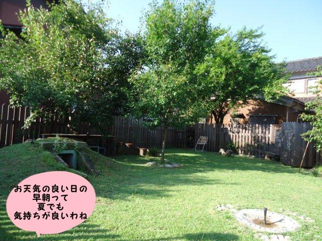 004_20120710212248.jpg