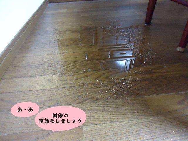 004_20120721214002.jpg