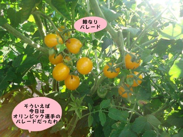 004_20120820210959.jpg