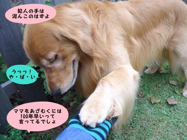 004_20121006200119.jpg