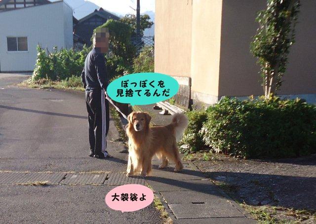 004_20121008204831.jpg