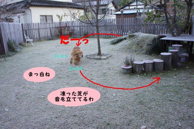 004_20121125214600.jpg
