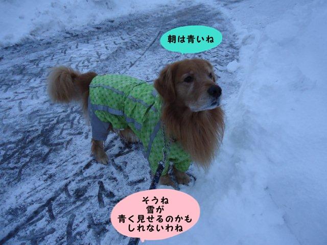 004_20121210163424.jpg