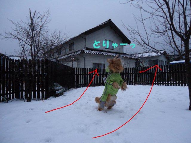 004_20121231104757.jpg