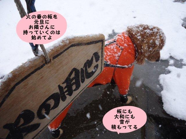 004_20130101194815.jpg