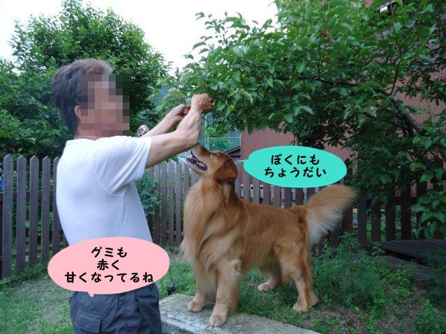 005_20120605202957.jpg