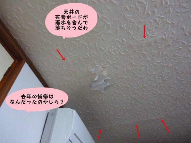 005_20120721214002.jpg