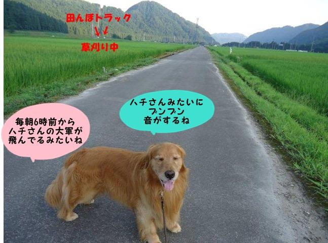 005_20120802211014.jpg