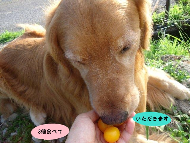 005_20120823204820.jpg