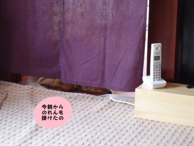 006_20120604130220.jpg