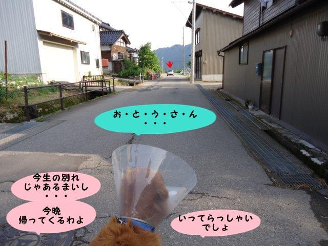 006_20120618174130.jpg