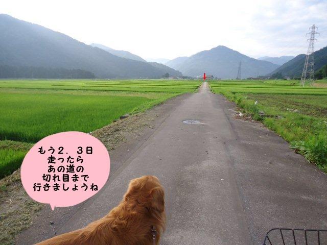 006_20120727232004.jpg