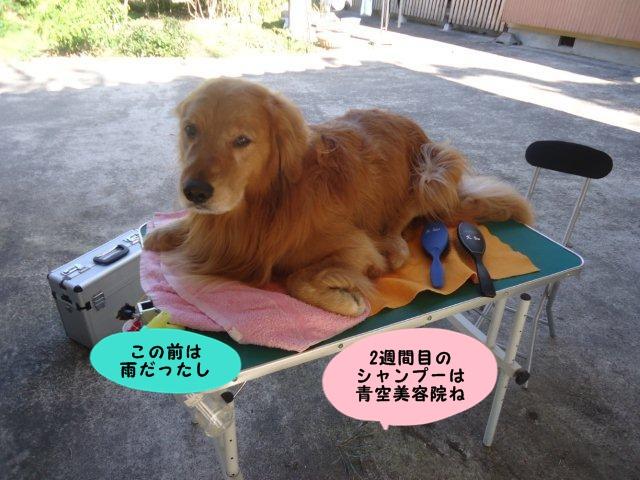 006_20121019202400.jpg