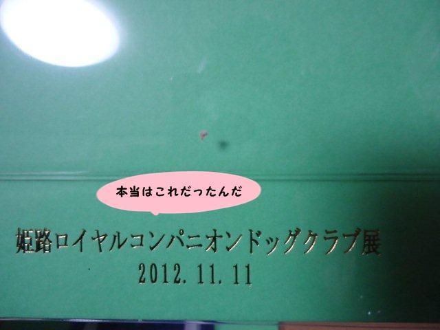008_20121123202445.jpg