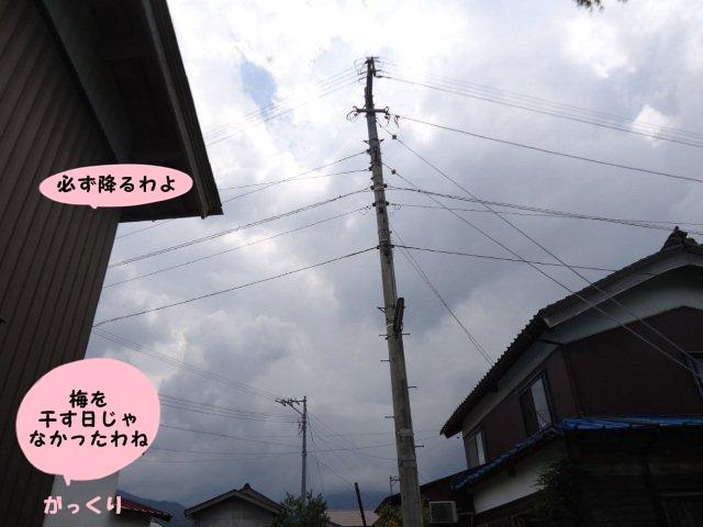 009_20120806142250.jpg