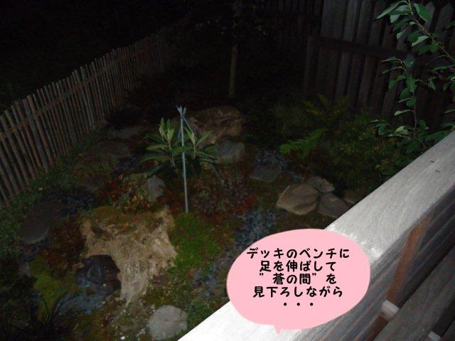 009_20120816212124.jpg