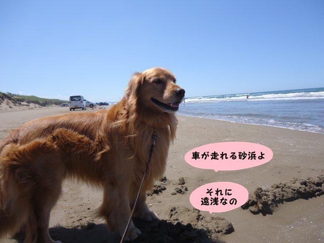 009_20120820210958.jpg