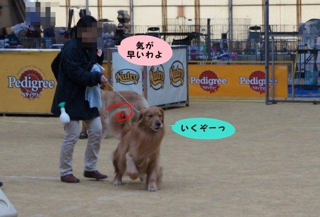 010_20120512203115.jpg