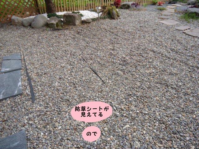 010_20120608201252.jpg