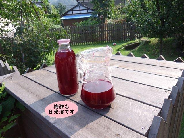 010_20120730132737.jpg