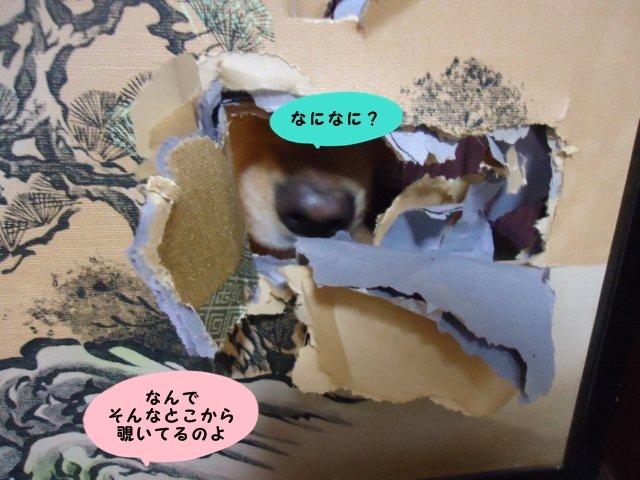 010_20120822201907.jpg