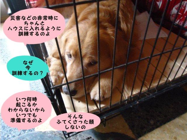 010_20121001201732.jpg