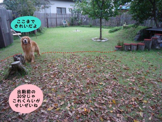 010_20121006200352.jpg