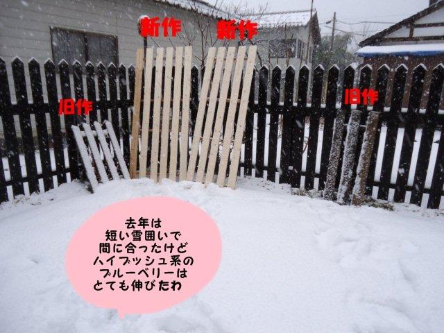 010_20121231132449.jpg