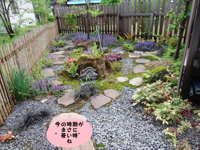 011_20120517070950.jpg