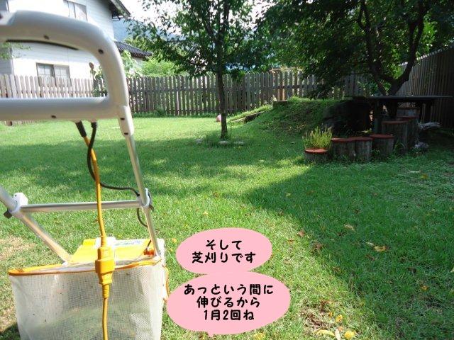 011_20120730132737.jpg