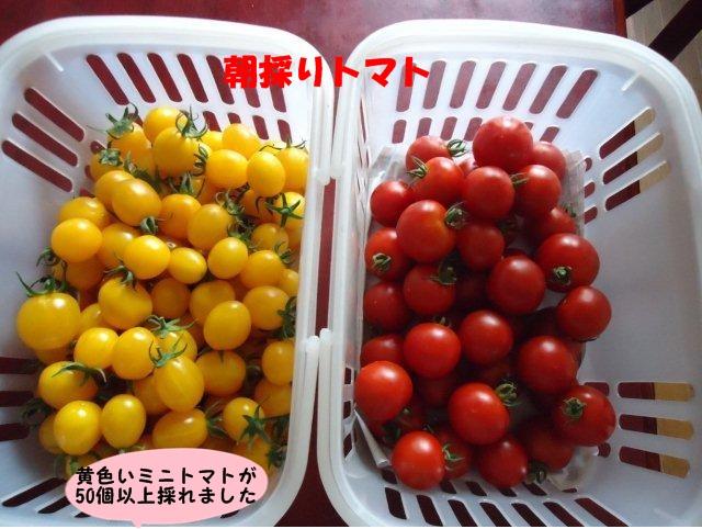 011_20120806142358.jpg