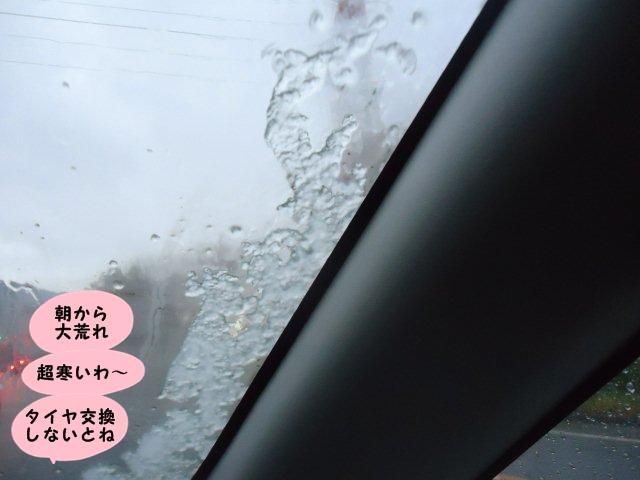 011_20121116093452.jpg