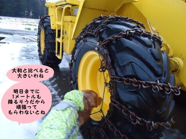 011_20121208192910.jpg