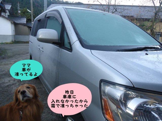 015_20121125214355.jpg
