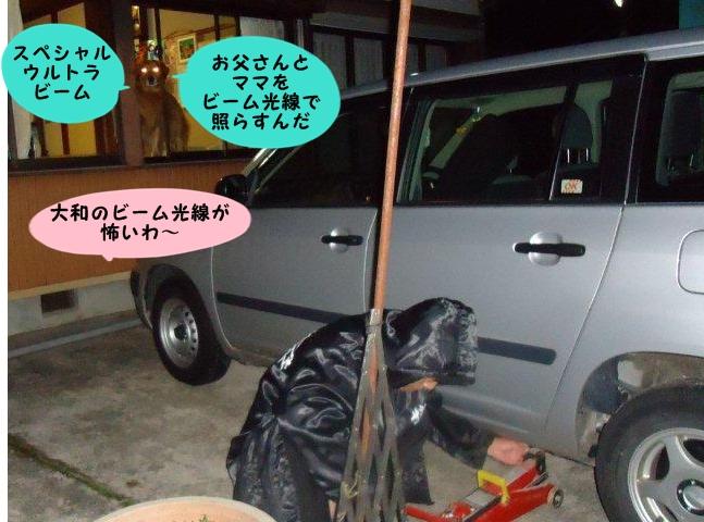 015_20121128210810.jpg