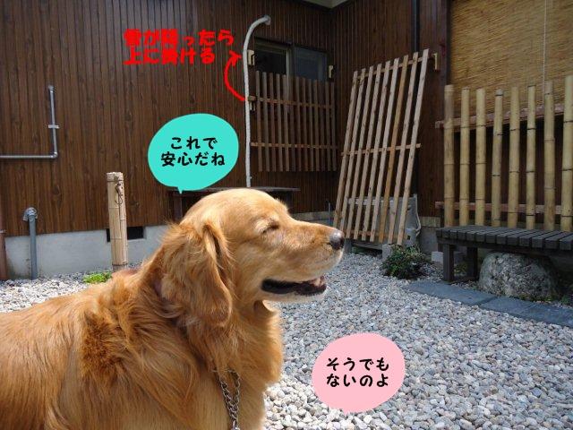030_20120608201248.jpg