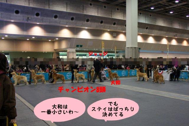 051_20121203103247.jpg