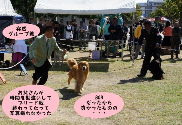 056_20121022203249.jpg