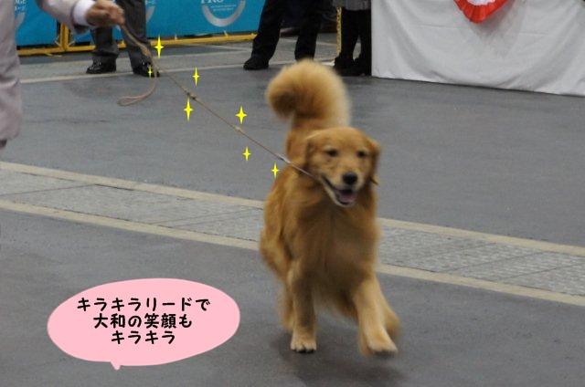 087_20121203103337.jpg