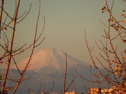 富士山2014