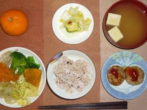 胚芽押麦入り五穀米,プチバーグ×2,蒸し野菜(キャベツ,玉葱,ブロッコリー,ニンジン,カボチャ,もやし),白菜の漬物,高野豆腐のおみそ汁,みかん
