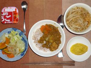 カレーライス,蒸し野菜(カボチャ,ニンジン,玉葱,キャベツ)プチオムレツ,もやしのスープ,ヨーグルト